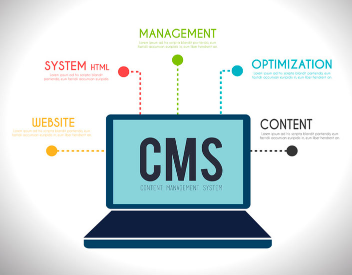 Content Management Systems (CMS) UK | CMS developers UK