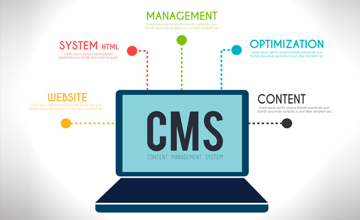Content Management Systems (CMS) Company UK